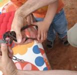 IMG 7890 154x150 Review: RepairCafé Spezial Kinderspielzeug | Dingfabrik Köln