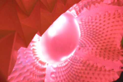 Anemonenlampe Bild 2