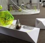 Fungotopia Ausstellung